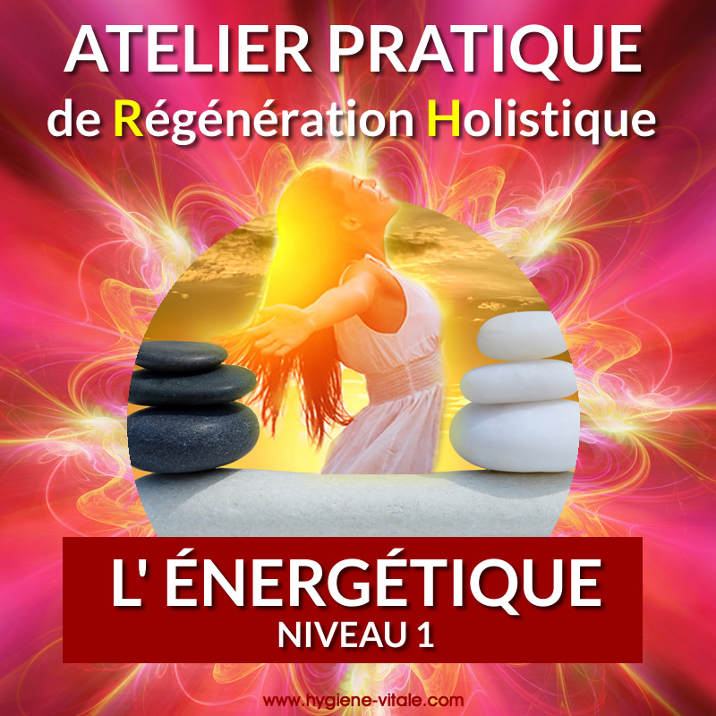 atelier pratique - L'énergétique